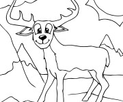 Coloriage Animal de Montagne