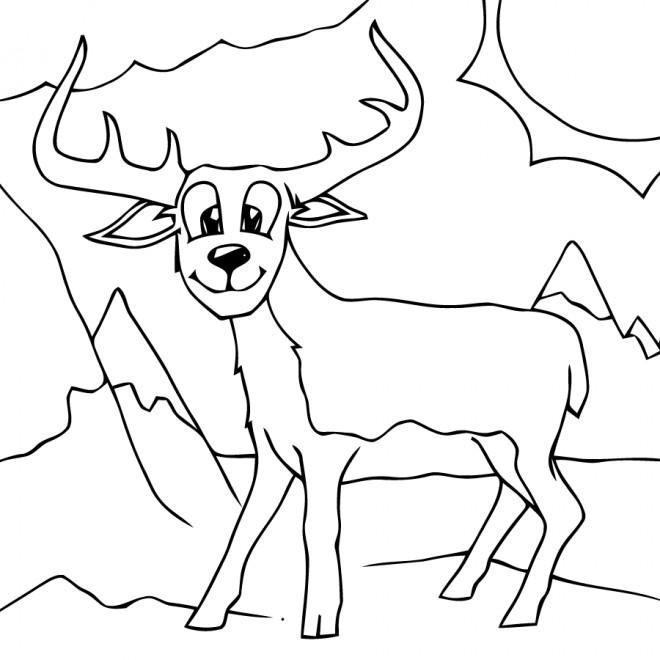 Coloriage et dessins gratuits Animal de Montagne à imprimer