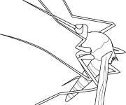 Coloriage et dessins gratuit Insecte petit moustique à imprimer