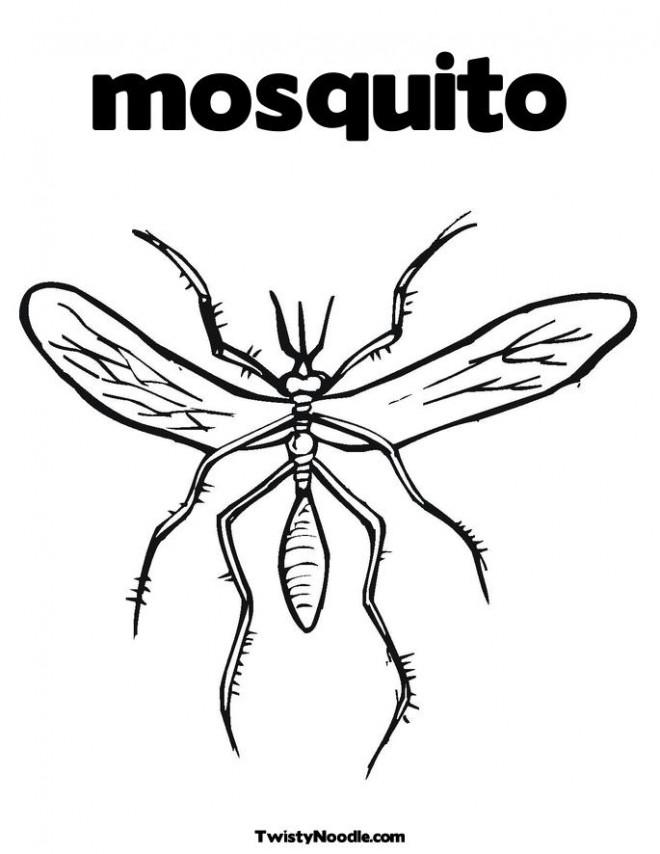 Coloriage et dessins gratuits Moustique adulte simple à imprimer