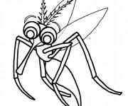 Coloriage Moustique l'insecte Vampire