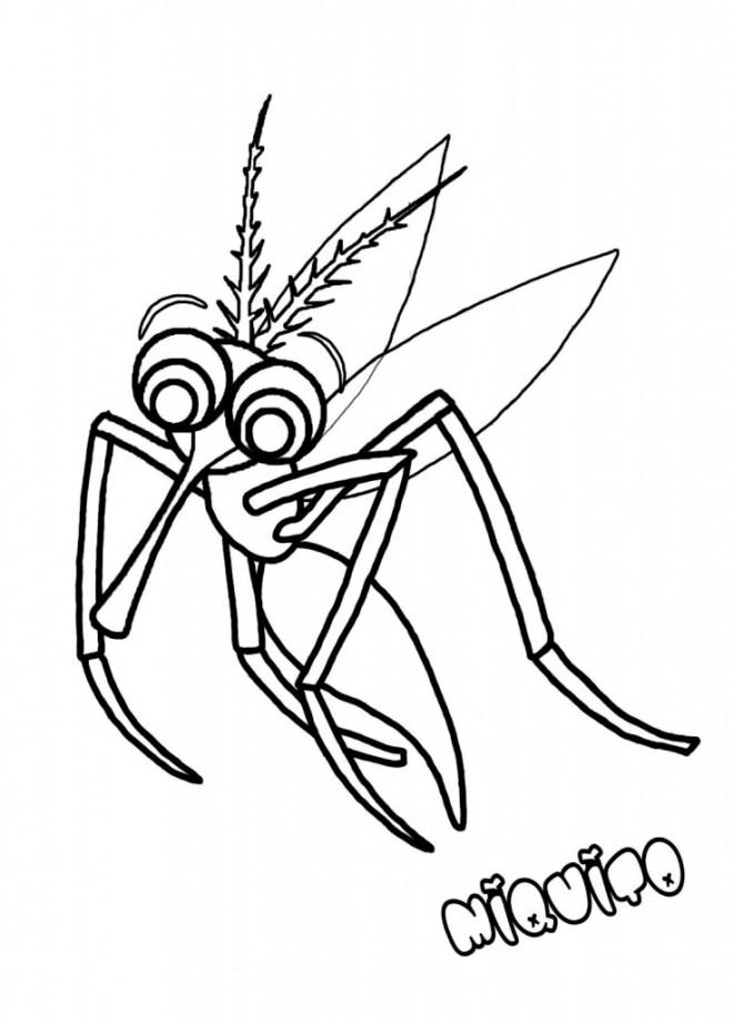 Coloriage et dessins gratuits Moustique l'insecte Vampire à imprimer
