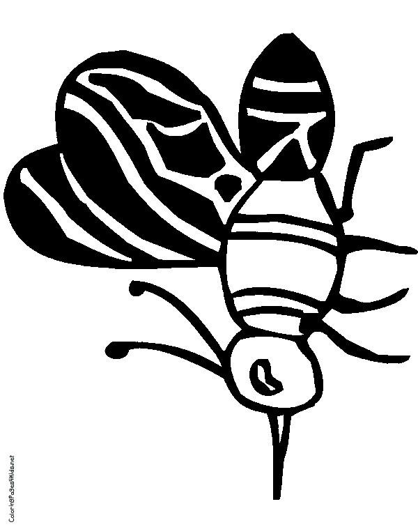 Coloriage et dessins gratuits Petit Moustique en noir à imprimer