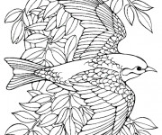 Coloriage Hirondelle en vol