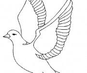 Coloriage dessin  Oiseau 16