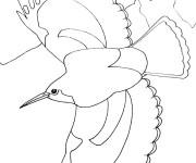 Coloriage Oiseau qui vole