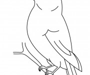 Coloriage Oiseau simple