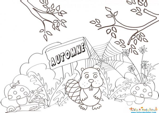 Coloriage paysage de castor dessin gratuit imprimer - Coloriage paysage automne ...