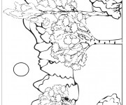 Coloriage Une forêt montagneuse