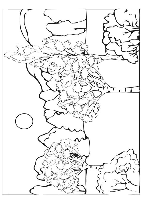 Coloriage et dessins gratuits Une forêt montagneuse à imprimer