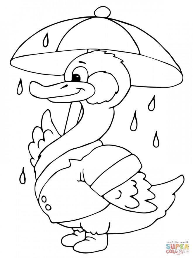 Coloriage et dessins gratuits Canard et Parapluie couleur à imprimer