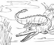 Coloriage et dessins gratuit Alligator féroce dans la rivière à imprimer