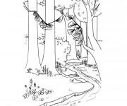 Coloriage et dessins gratuit Paysage de Forêt et rivière à imprimer