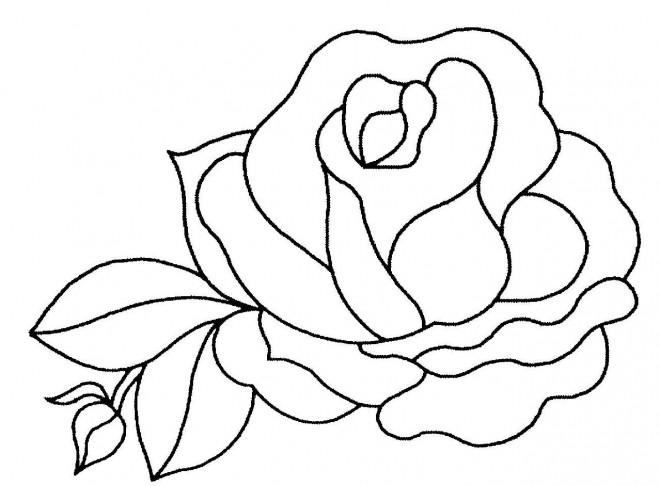 Coloriage et dessins gratuits Belle Rose à imprimer