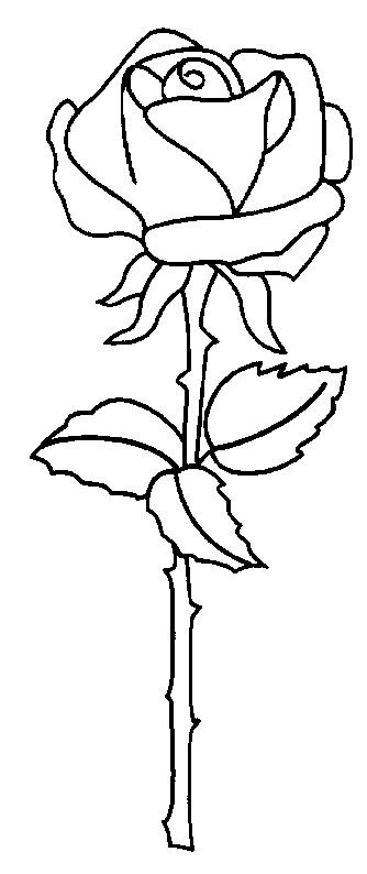 Coloriage et dessins gratuits Rose à télécharger à imprimer