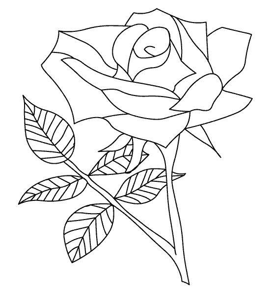 coloriage rose de printemps couleur dessin gratuit imprimer. Black Bedroom Furniture Sets. Home Design Ideas