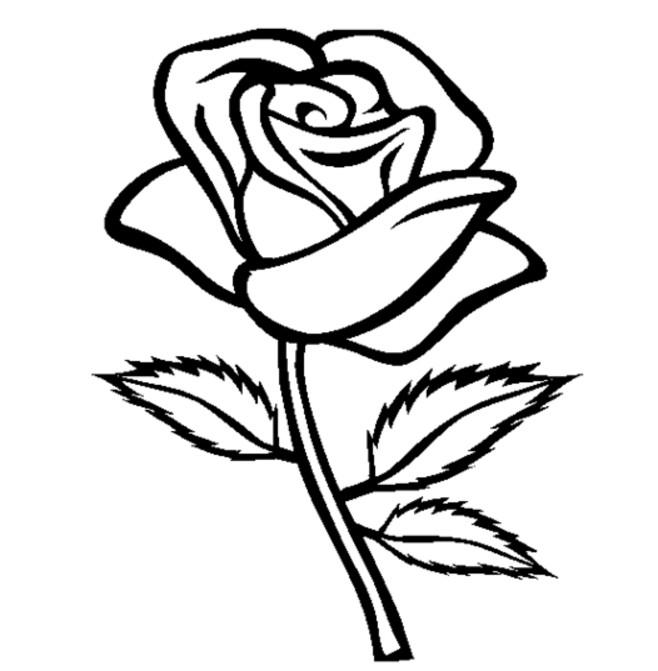 Coloriage rose en noir dessin gratuit imprimer - Rose coloriage ...