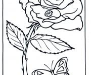 Coloriage dessin  Roses 10