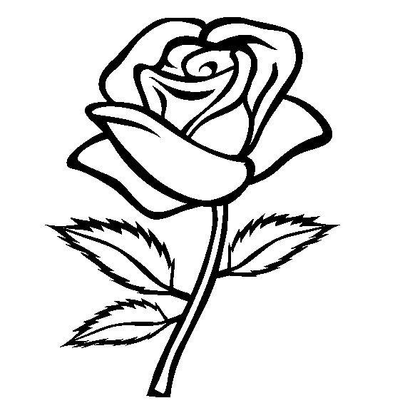 Bien connu Coloriage Roses 2 dessin gratuit à imprimer JC65