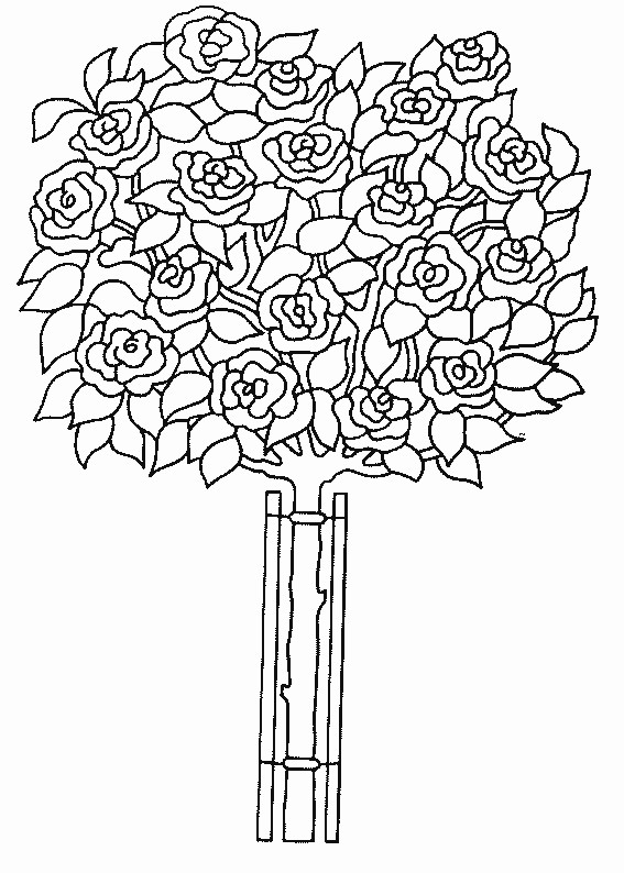 Coloriage roses dans petite vase dessin gratuit imprimer - Dessin de rosier ...