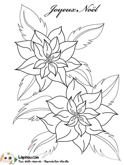 Coloriage Roses de Noël dessin gratuit à imprimer