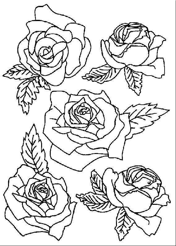 Coloriage Roses Gratuit A Imprimer