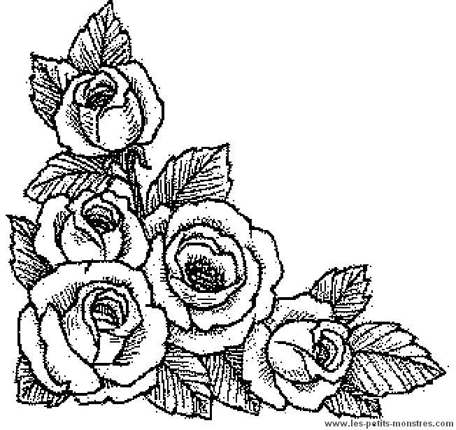 Coloriage et dessins gratuits Roses réalistes à imprimer
