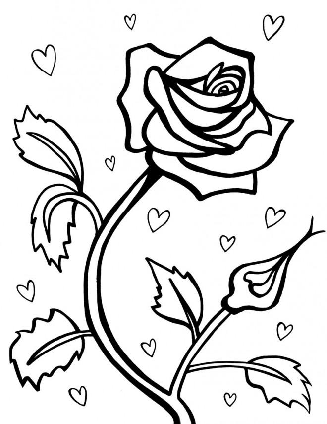 Coloriage Roses Romantiques dessin gratuit à imprimer