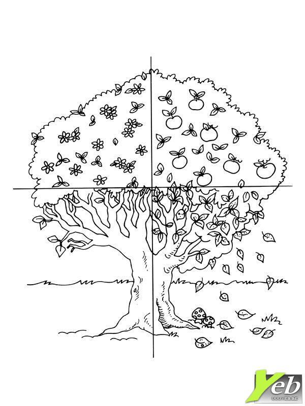 Coloriage arbre en quatres saisons dessin gratuit imprimer - Dessin d arbre en automne ...