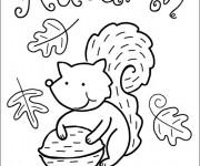 Coloriage et dessins gratuit Ecureuil et Automne à imprimer