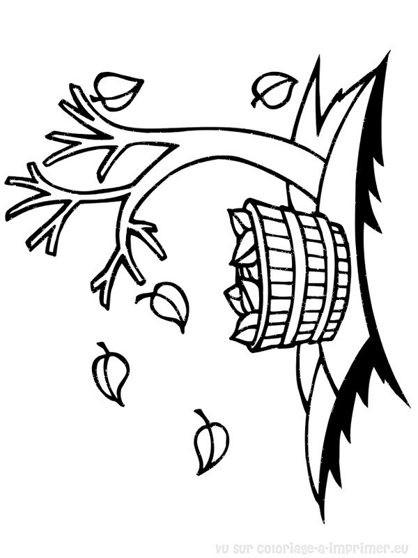 Coloriage et dessins gratuits Feuilles d'Arbre sur La terre à imprimer