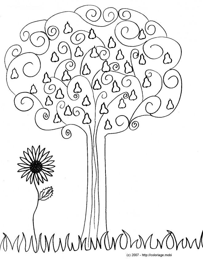 Coloriage et dessins gratuits Fruit d'Automne stylisés à imprimer
