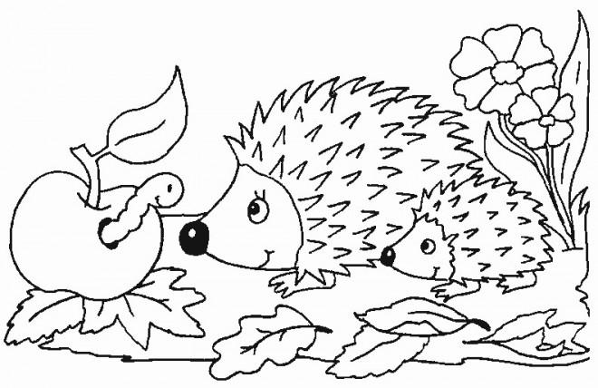 Coloriage Les Animaux En Automne Dessin Gratuit à Imprimer