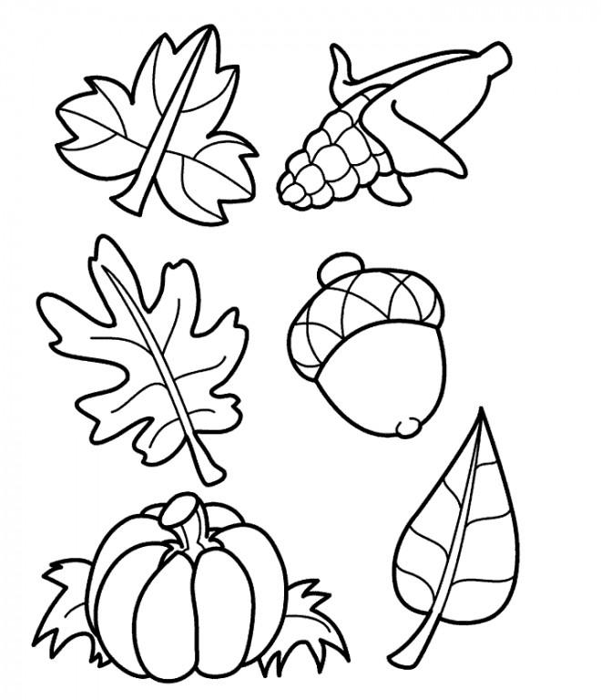 Coloriage et dessins gratuits Les Feuilles et Les Fruits à imprimer