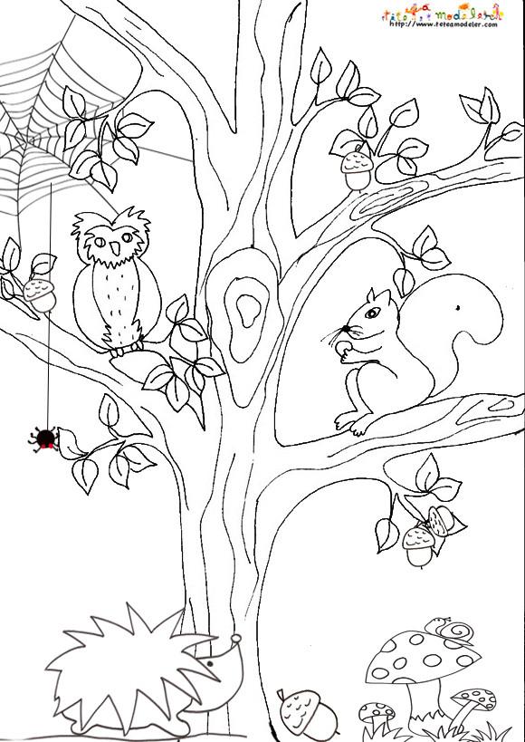 Coloriage paysage animaux et arbre dessin gratuit imprimer - Arbre automne dessin ...