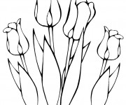 Coloriage Des Tulipes  en vecteur à colorier