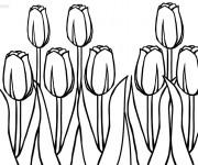 Coloriage Des Tulipes superbe