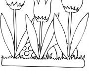Coloriage Illustration Fleurs Tulipe