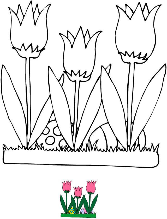 Coloriage et dessins gratuits Illustration Fleurs Tulipe à imprimer