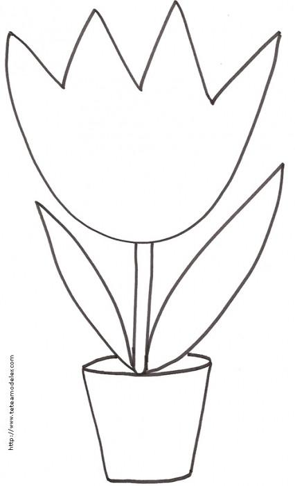 Coloriage et dessins gratuits La Tulipe dessinée par Le Crayon à imprimer