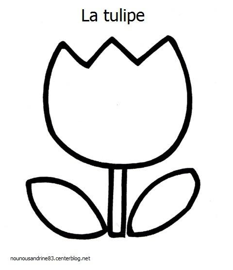 Coloriage et dessins gratuits La Tulipe simplifiée à imprimer