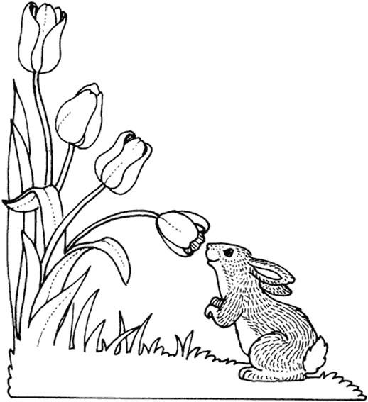 Coloriage et dessins gratuits Le Lapin et Les Fleurs de Tulipe à imprimer