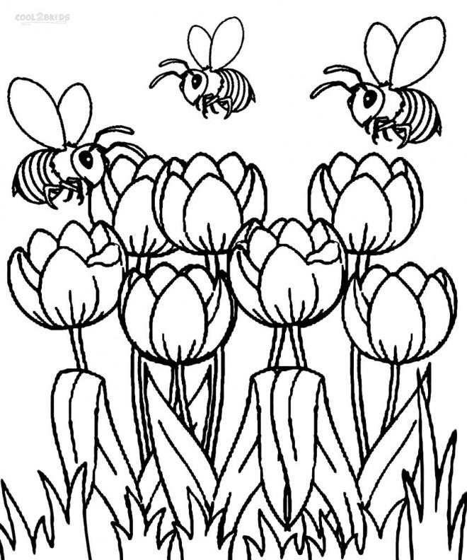 Coloriage et dessins gratuits Les Abeilles s'envolent sur Les Tulipes à imprimer