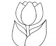 Coloriage tulipe gratuit imprimer - Coloriage fleur tulipe ...