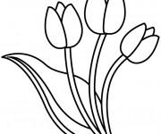 Coloriage Tulipe à découper