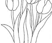 Coloriage Tulipe au Jardin