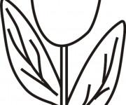 Coloriage Tulipe facile dessiné par Le Crayon