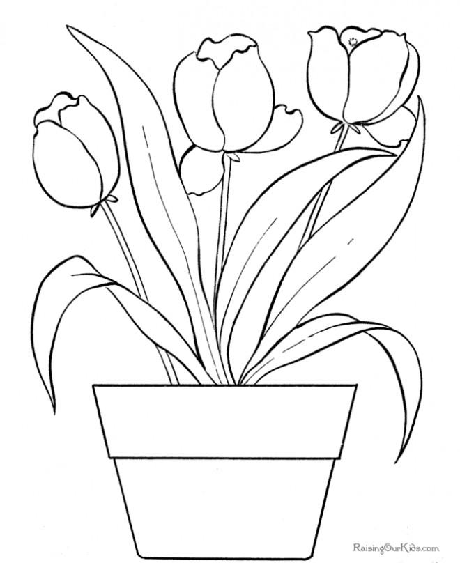Coloriage Tulipe magique dessin gratuit à imprimer