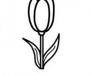 Coloriage et dessins gratuit Tulipe maternelle à imprimer