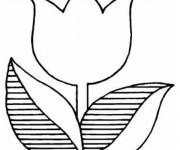 Coloriage Tulipe rayée